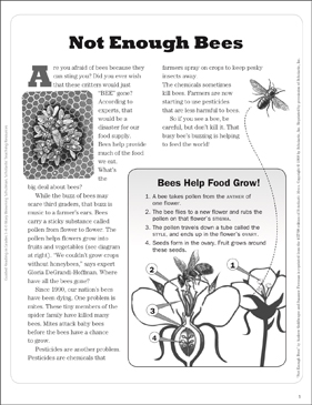 Not Enough Bees: Text Passage - Printable Worksheet
