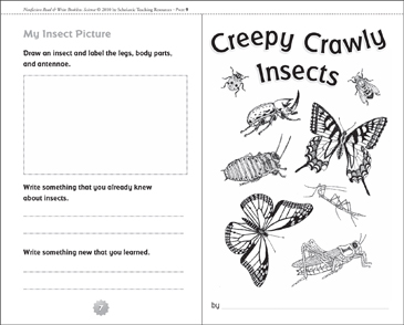 Creepy Crawly Insects - Printable Worksheet
