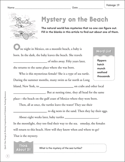 Mystery on the Beach: Quick Cloze Passage | Printable Skills