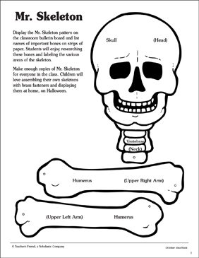 Mr Skeleton Pattern And Activities Printable