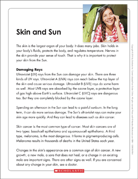 Skin and Sun: Text & Organizer - Printable Worksheet