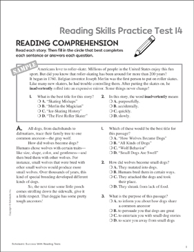 Reading Skills Practice Test 14 (Grades 5-6) - Printable Worksheet