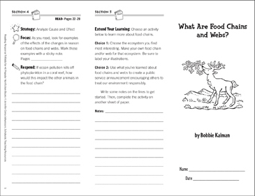 Food Chains and Webs Reading Response Trifold - Printable Worksheet