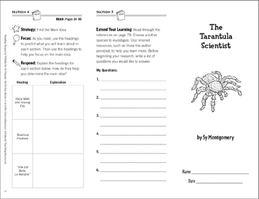 The Tarantula Scientist: Reading Response Trifold - Printable Worksheet