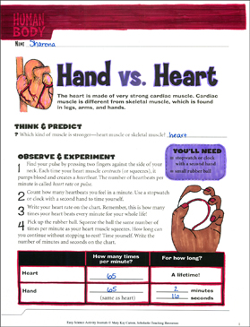 Hand vs. Heart: A Life Science Journaling Activity - Printable Worksheet