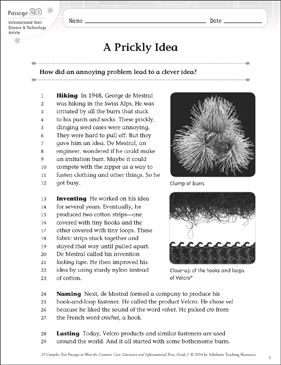 A Prickly Idea: Text & Questions - Printable Worksheet