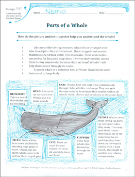 Parts of a Whale: Text & Questions - Printable Worksheet