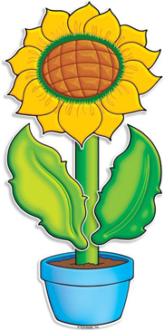 Teal Potted Sunflower - Image Clip Art