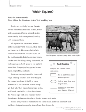 Which Equine? (Compare & Contrast): Close Reading - Printable Worksheet