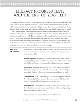 Literacy Progress Test: End-of-Year Assessment - Printable Worksheet